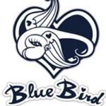 Bluebirddenim.com