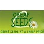 Cheap Seeds