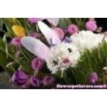 Flower Pet Lovers