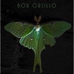 Art and Illustrations of Bob Orsillo