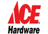 Ace coupons or promo codes at acetogo.com