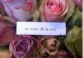 aunomdelarose.fr coupons or promo codes