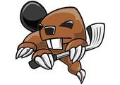 beavergolf.com coupons or promo codes