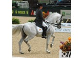 Premier Dressage Arenas coupons or promo codes at dressagearena.net