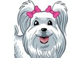 Glamour Dog coupons or promo codes at glamourdog.com
